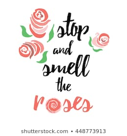 stop-smell-roses