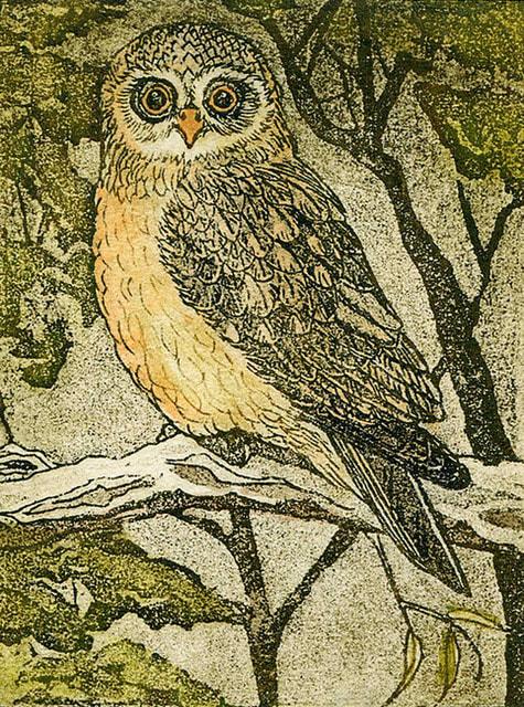 robin ezra-boobook-owl
